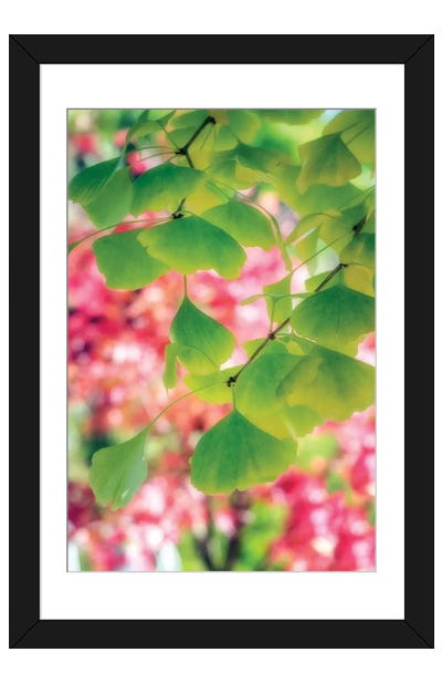 Rain Of Leaves Framed Art Print