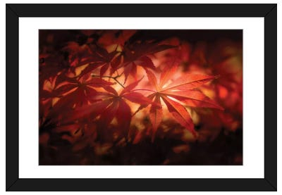 Red Light Framed Art Print