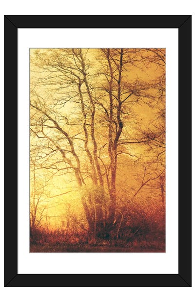 Suddenly Fall Framed Art Print