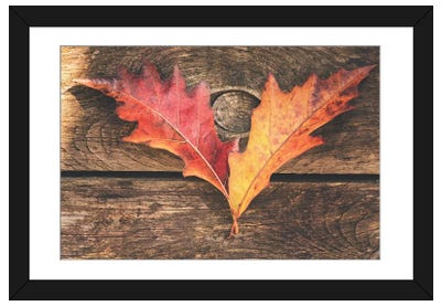 The Colors Of October Framed Art Print