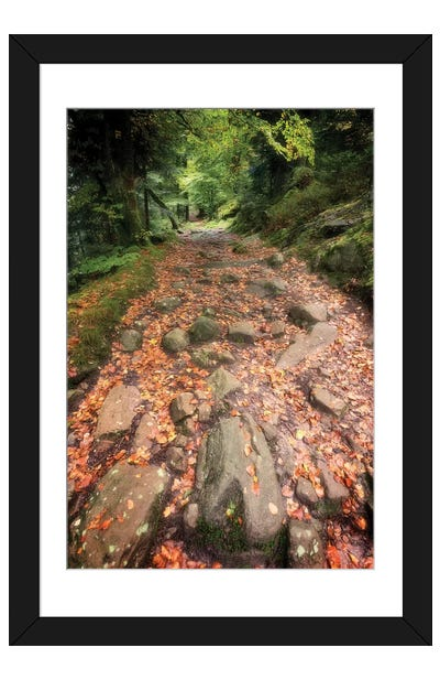 The Forest Way Framed Art Print