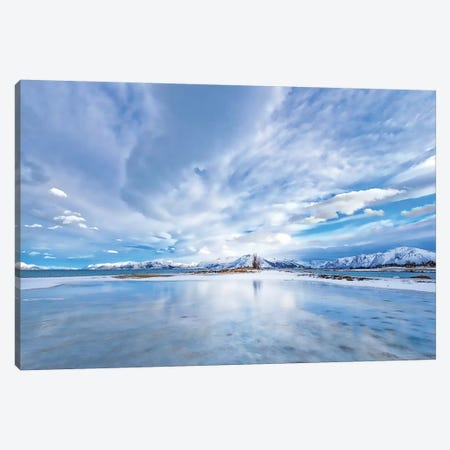 The Last Snow Canvas Print #PSL164} by Philippe Sainte-Laudy Canvas Wall Art
