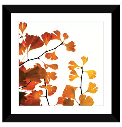 Tree Of Gold Framed Art Print