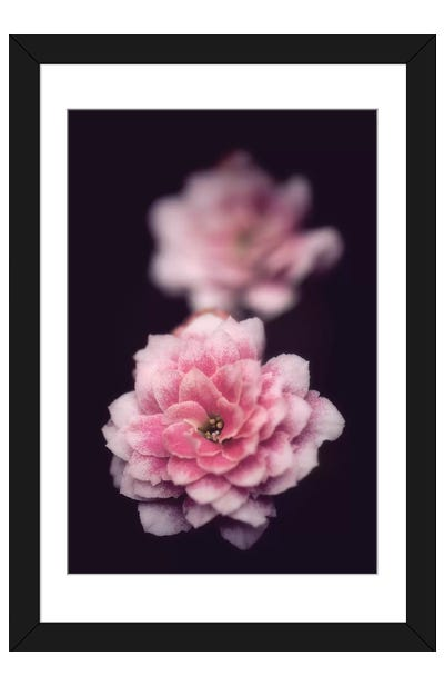 Two Is Better Framed Art Print