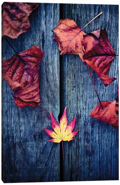 Welcome Autumn Canvas Art Print