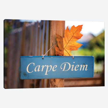 Welcoming Fall In The Carpe Diem Canvas Print #PSL183} by Philippe Sainte-Laudy Canvas Art Print