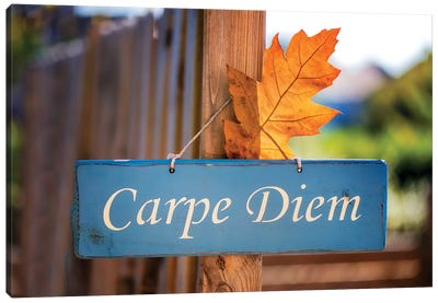 Welcoming Fall In The Carpe Diem Canvas Art Print