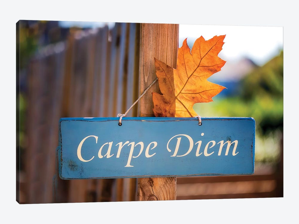 Welcoming Fall In The Carpe Diem by Philippe Sainte-Laudy 1-piece Canvas Art Print
