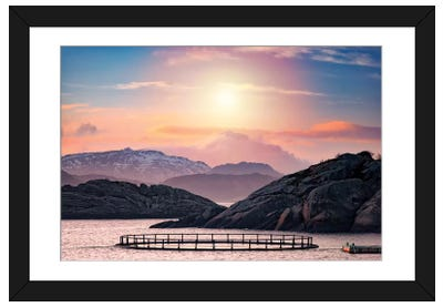 Witnessing The Death Of The Sun Framed Art Print