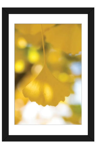 Yellow Range Framed Art Print