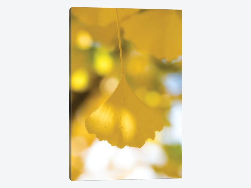 Yellow Range 1-piece Canvas Print