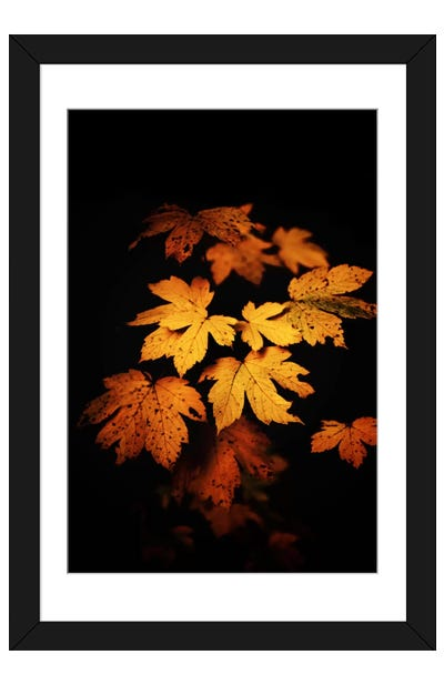 Autumn Photo Framed Art Print