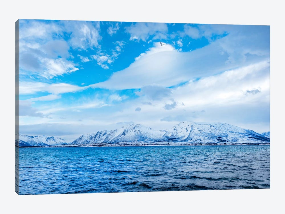 Blue Fjord by Philippe Sainte-Laudy 1-piece Canvas Art Print
