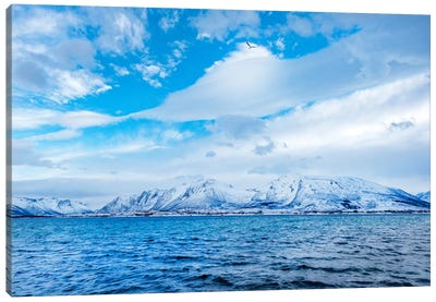Blue Fjord Canvas Art Print