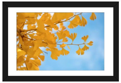 Blue Meets Yellow Framed Art Print