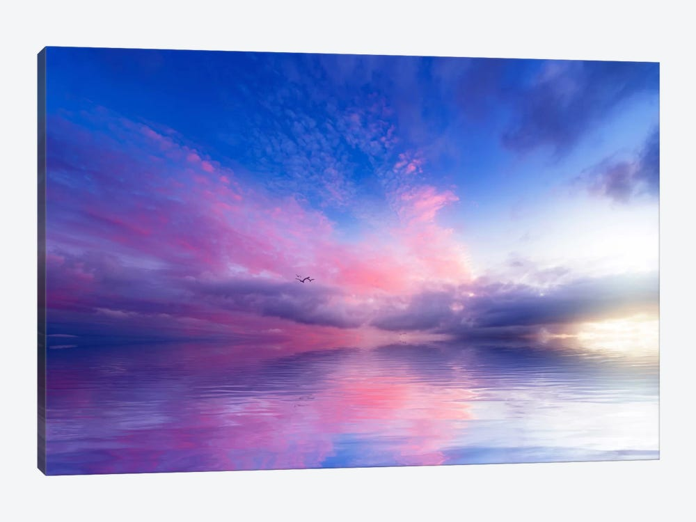 Close To Infinity by Philippe Sainte-Laudy 1-piece Canvas Art Print