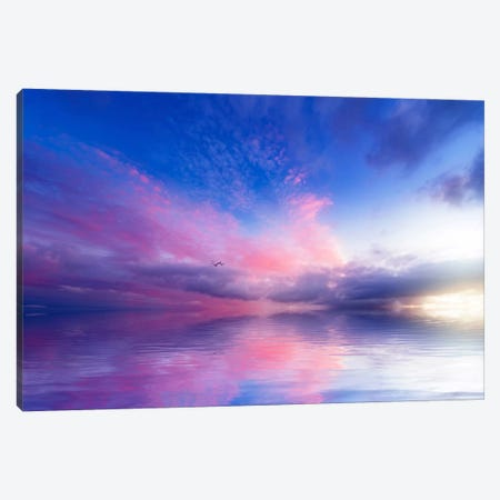 Close To Infinity Canvas Print #PSL43} by Philippe Sainte-Laudy Canvas Artwork