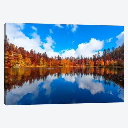 Cognitive Dreaming Canvas Print #PSL45} by Philippe Sainte-Laudy Canvas Art Print