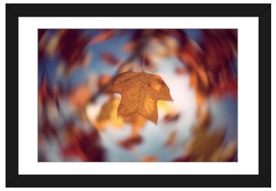 Complexity Framed Art Print