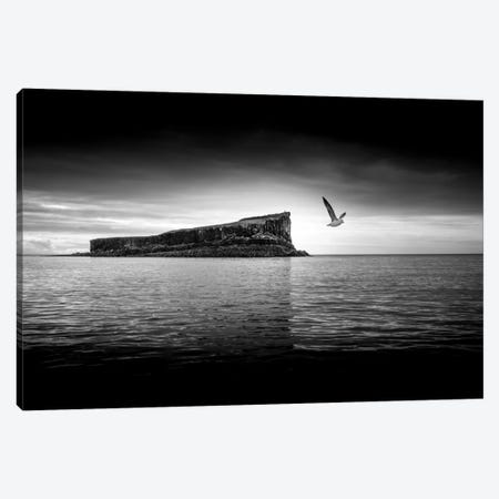 A Moment Apart Canvas Print #PSL4} by Philippe Sainte-Laudy Canvas Wall Art