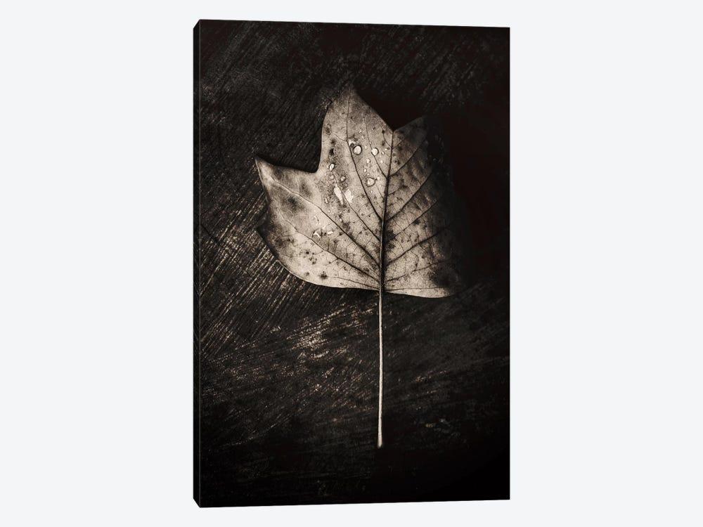 Dark Leaves 1-piece Art Print