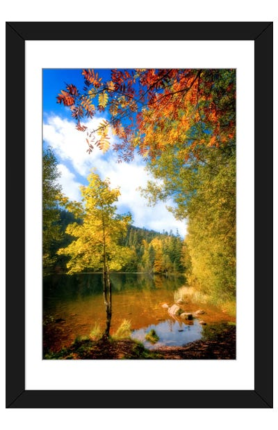 Fall Framing Framed Art Print
