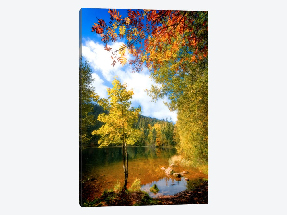 Fall Framing by Philippe Sainte-Laudy 1-piece Canvas Art Print