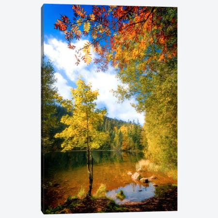 Fall Framing Canvas Print #PSL61} by Philippe Sainte-Laudy Canvas Art