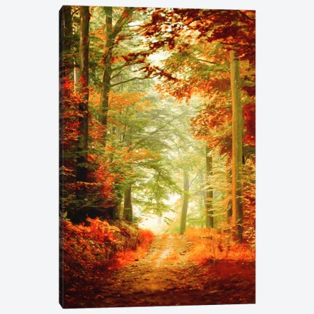 Fall Painting Canvas Print #PSL62} by Philippe Sainte-Laudy Canvas Artwork