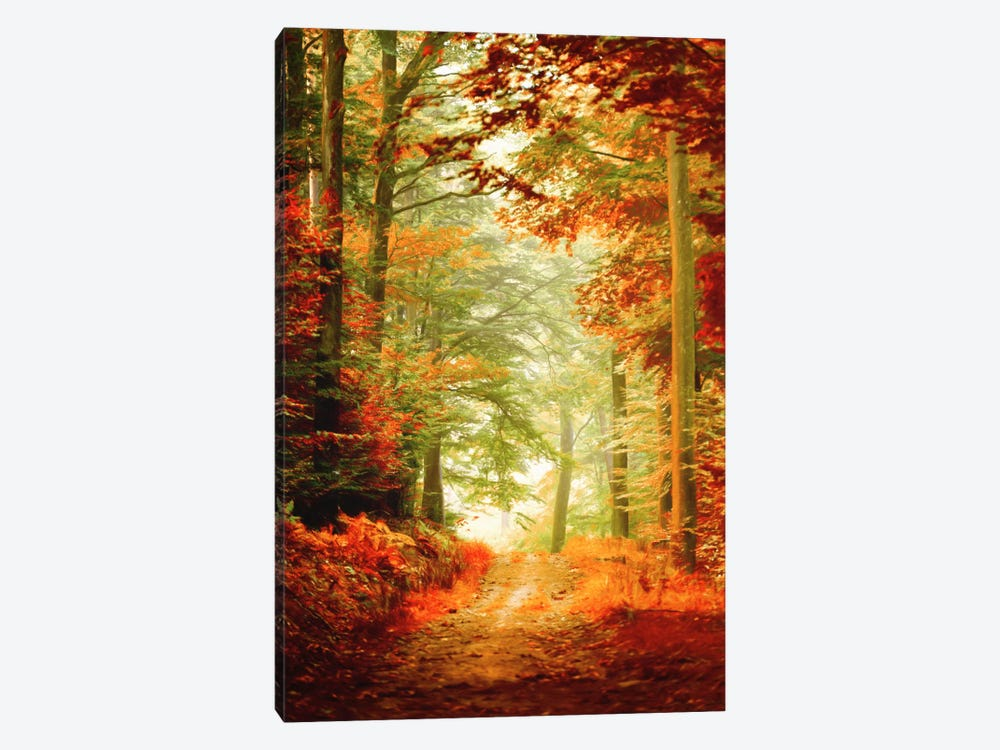 Fall Painting by Philippe Sainte-Laudy 1-piece Canvas Wall Art