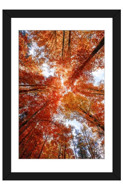 A Season Framed Art Print