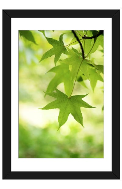Green Closer Framed Art Print