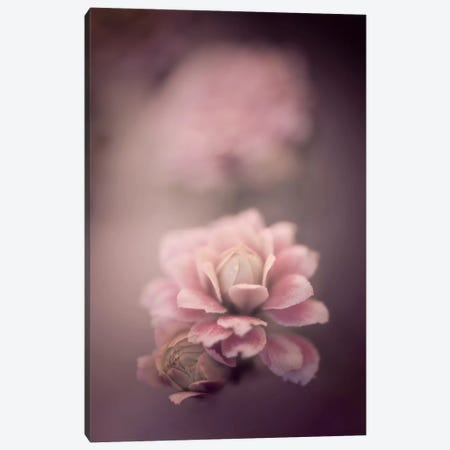 Just For Love Canvas Print #PSL93} by Philippe Sainte-Laudy Art Print