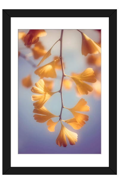A Touch Of Autumn Framed Art Print