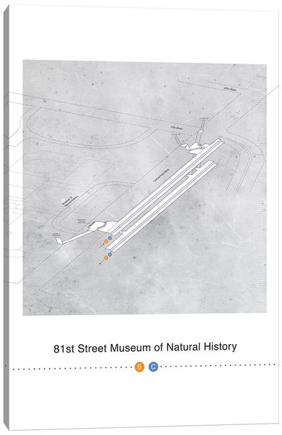 81st Street Museum of Natural History 3D Map Poster Canvas Art Print
