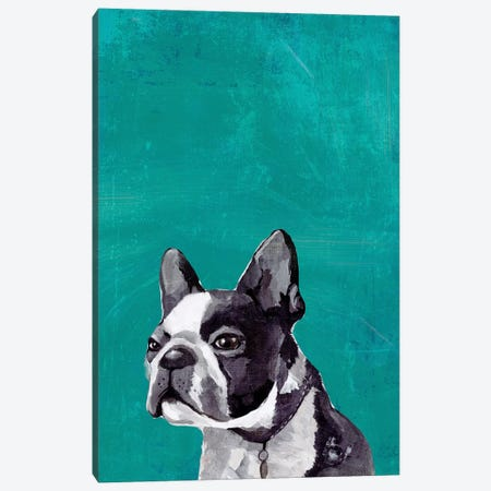 Frenchie Puppy  Canvas Print #PST1014} by PI Studio Art Print