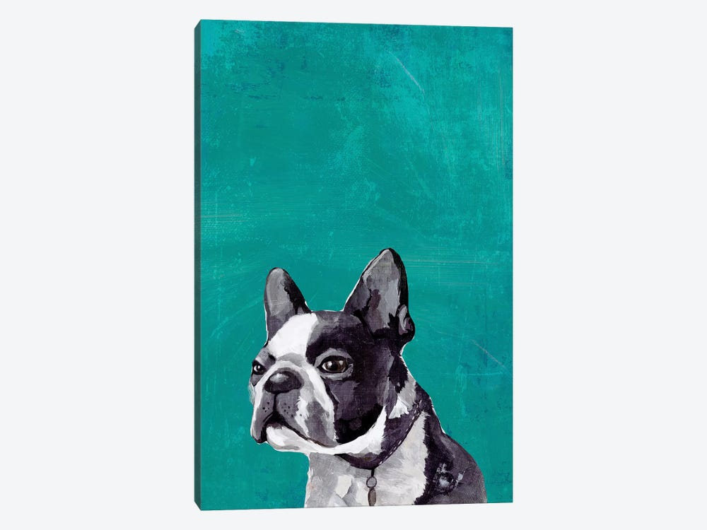 Frenchie Puppy  by PI Studio 1-piece Canvas Art