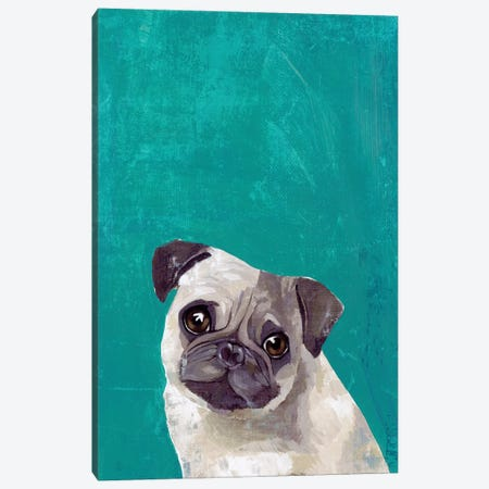 Pug Puppy  Canvas Print #PST1015} by PI Studio Art Print