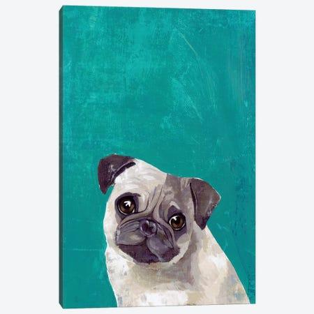 Pug Puppy  Canvas Print #PST1015} by PI Studio Art Print