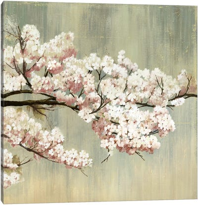 Blossoms I Canvas Art Print