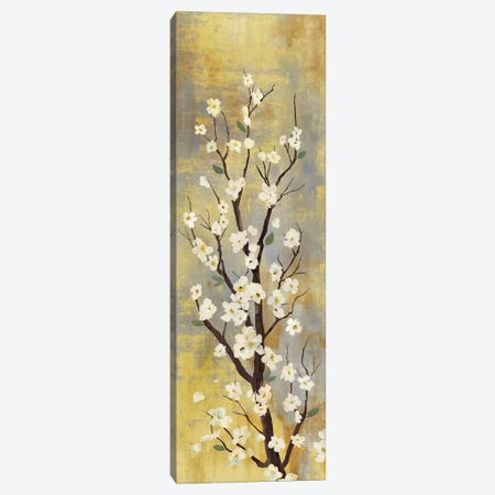 Blossoms II Canvas Print #PST104} by PI Studio Canvas Wall Art