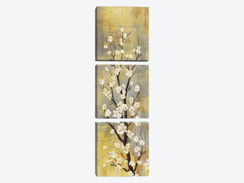 Blossoms II 3-piece Canvas Print