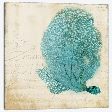 Blue Coral II Canvas Print #PST111} by PI Studio Canvas Wall Art