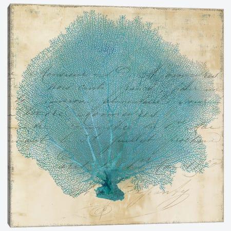 Blue Coral IV Canvas Print #PST113} by PI Studio Canvas Art