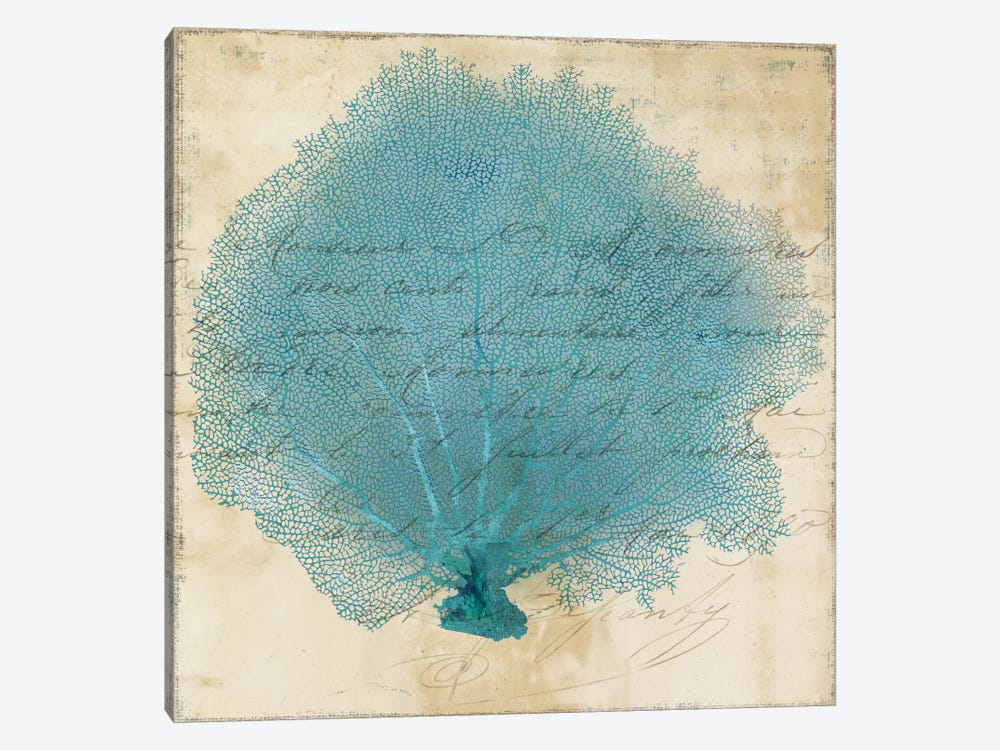 Blue Coral IV by PI Studio 1-piece Canvas Print
