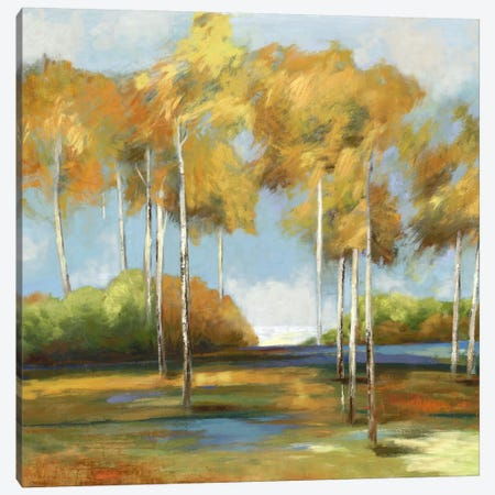 Breezy Birches Canvas Print #PST131} by PI Studio Canvas Wall Art