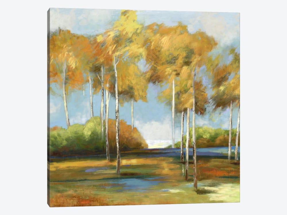 Breezy Birches by PI Studio 1-piece Canvas Art Print