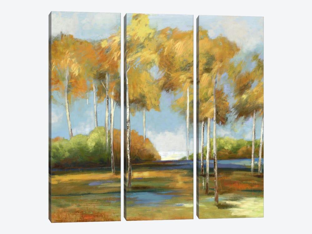 Breezy Birches by PI Studio 3-piece Art Print