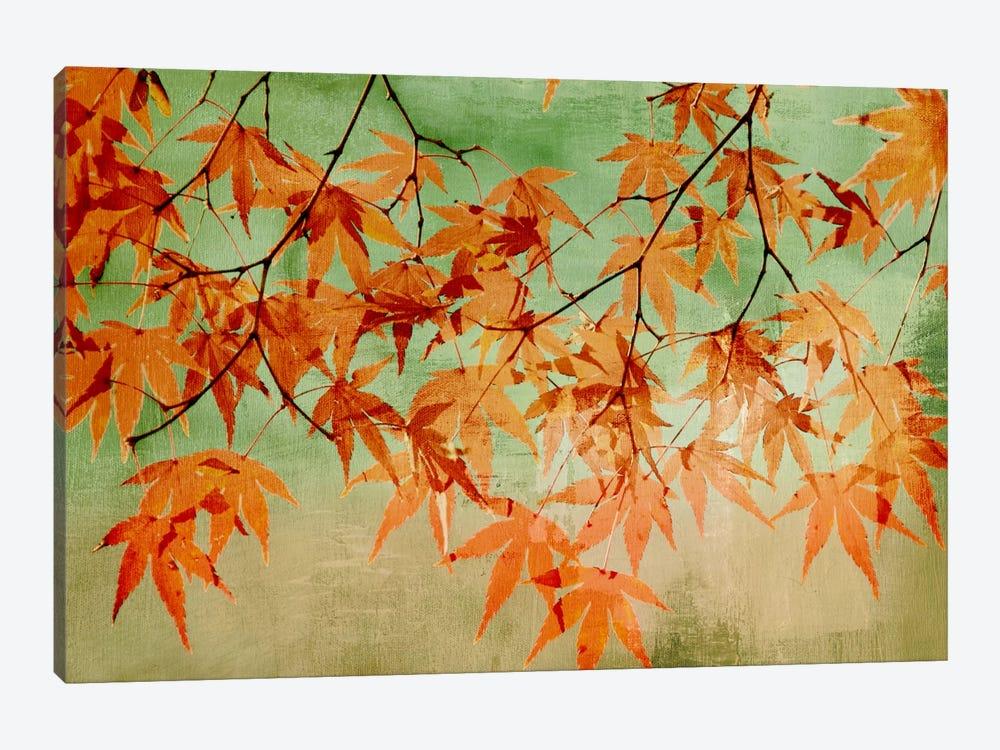 Canopy by PI Studio 1-piece Canvas Wall Art