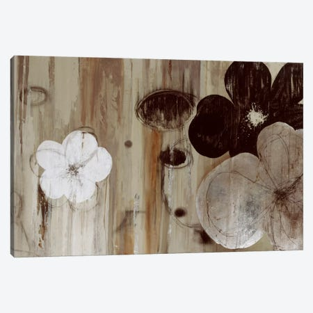 Chocolate And Silver Canvas Print #PST165} by PI Studio Canvas Art